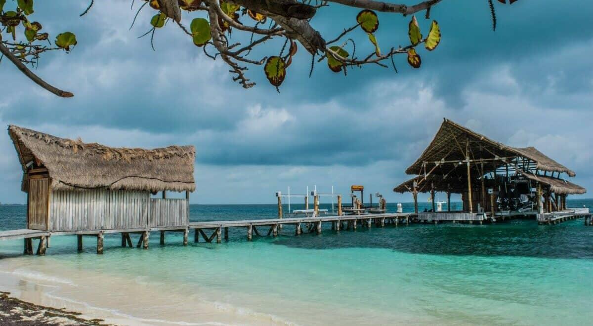 Playa Tortugas Cancun Todo lo que debes saber 1
