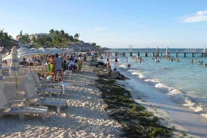 Playa Tortugas Cancún - Todo lo que debes saber 4