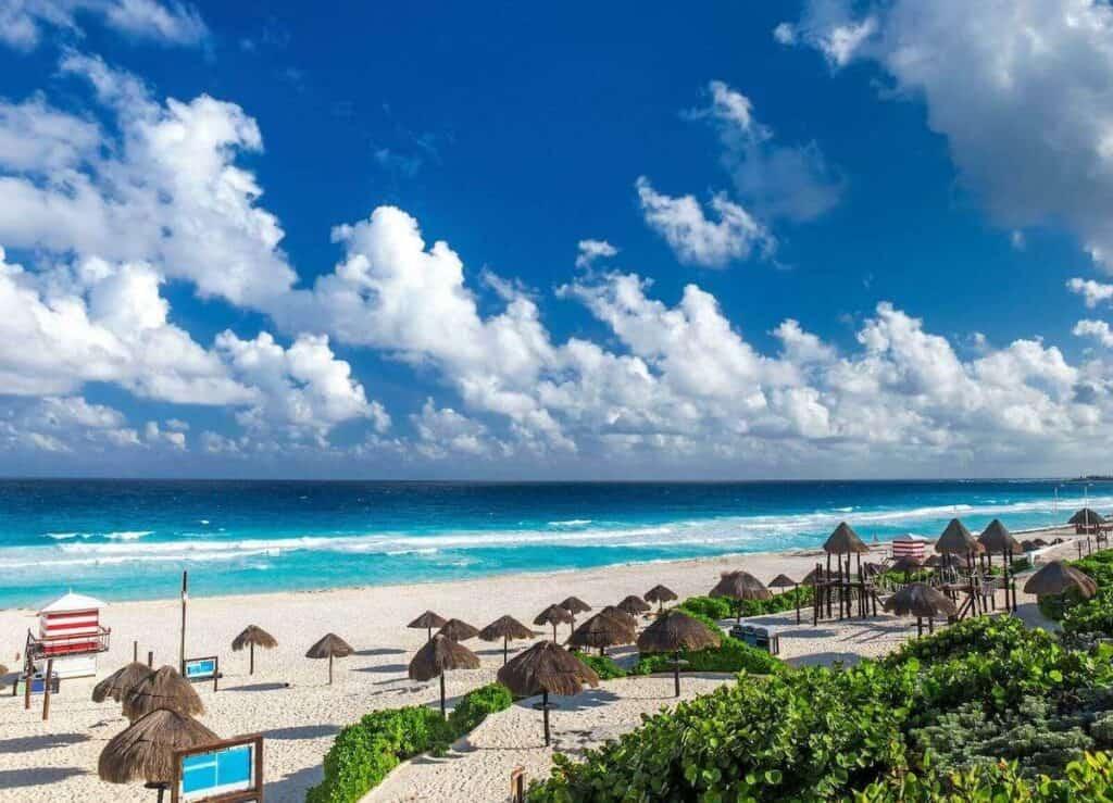 playa delfines cancun mangle