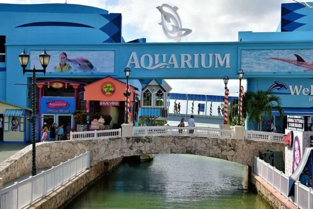 plaza la isla cancun acuario interactivo