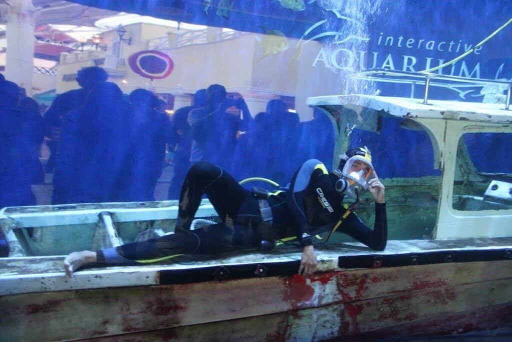 que hacer en cancun - acuario interactivo