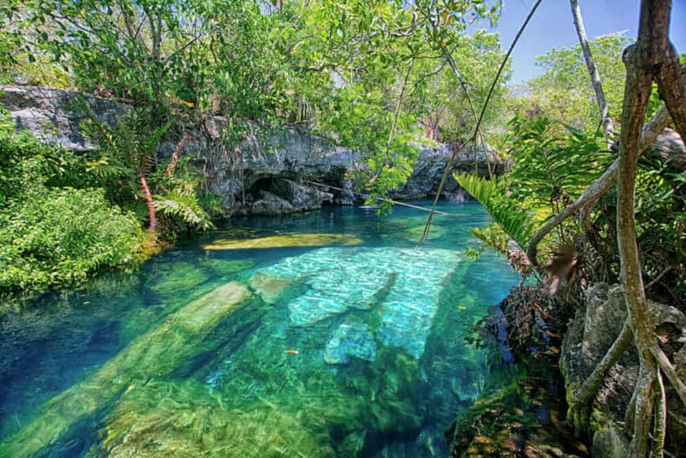 Cenotes Playa del Carmen - Cenote Cristalino