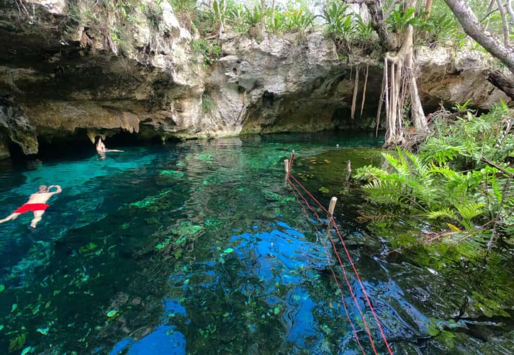 Gran Cenote Tulum - Actividades