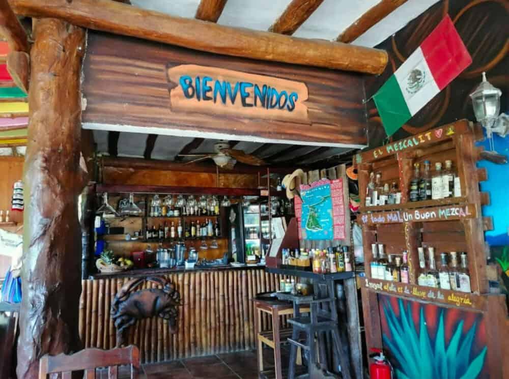 Holbox Quintana Roo - Crustáceo Kascarudo Holbox