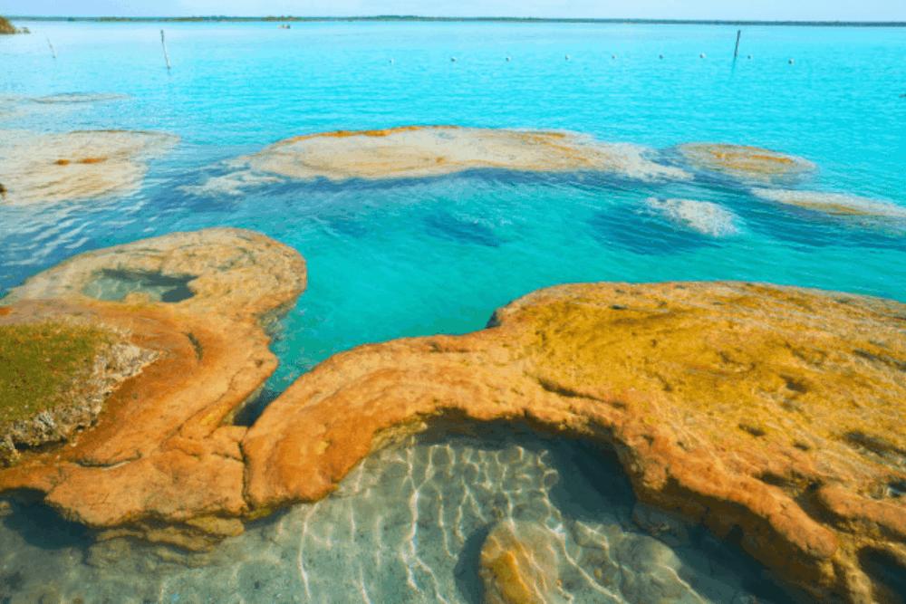 Laguna de Bacalar - Visita los Estromatolitos