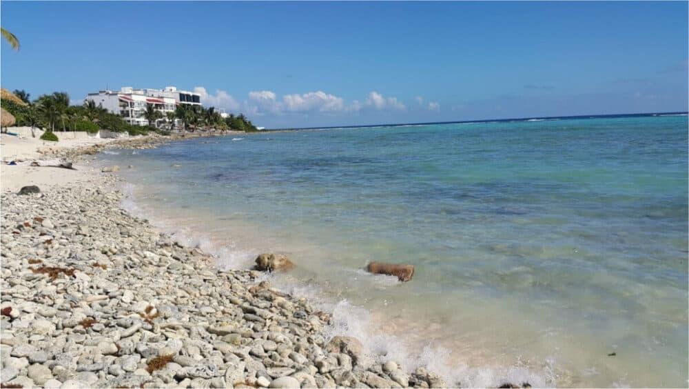 Playa Akumal - Bahía de la Media Luna
