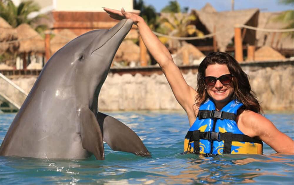 Qué hacer en Mahahual - Nadar con delfines