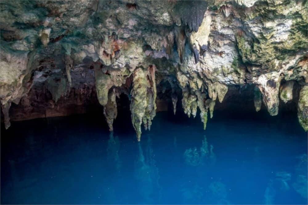 Ruta de los Cenotes Puerto Morelos - La Noria