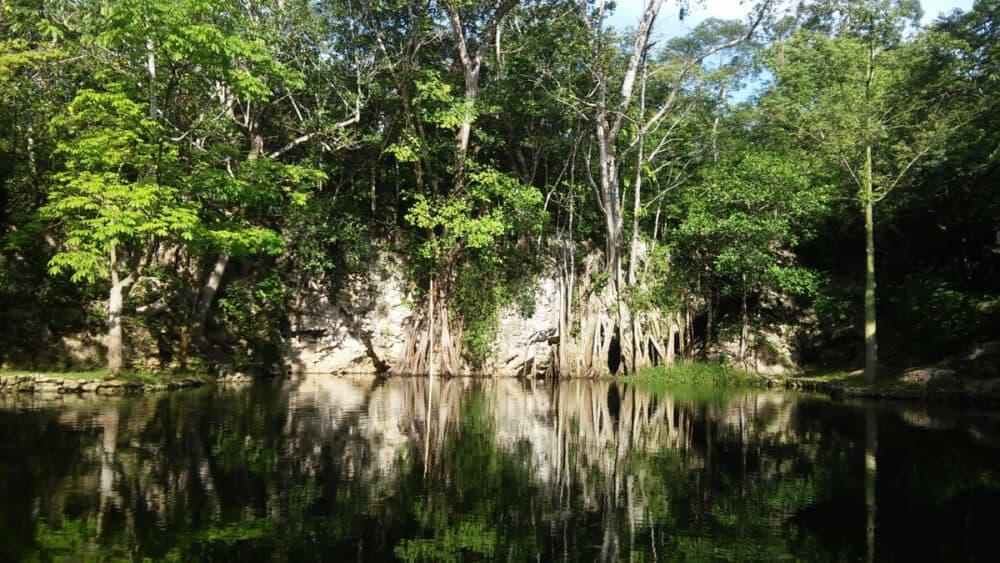 Ruta de los Cenotes Puerto Morelos - Reserva Toh
