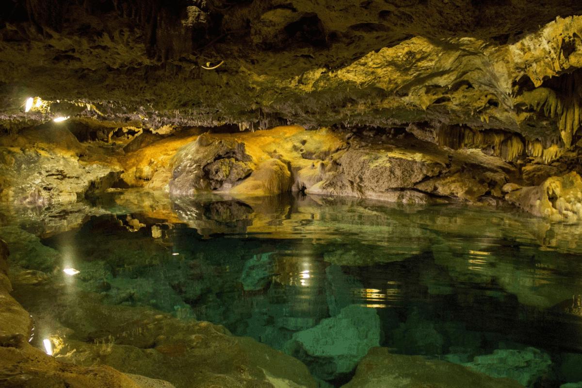 Cenotes de Yucatán - Cenote San Ignacio