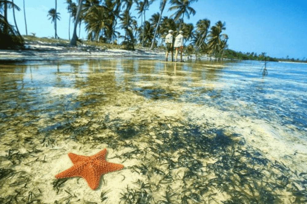 Isla Blanca Cancún - Lo más atractivo de Isla blanca Cancún