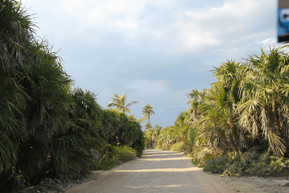 Punta Allen - Cómo se puede llegar a Punta Allen