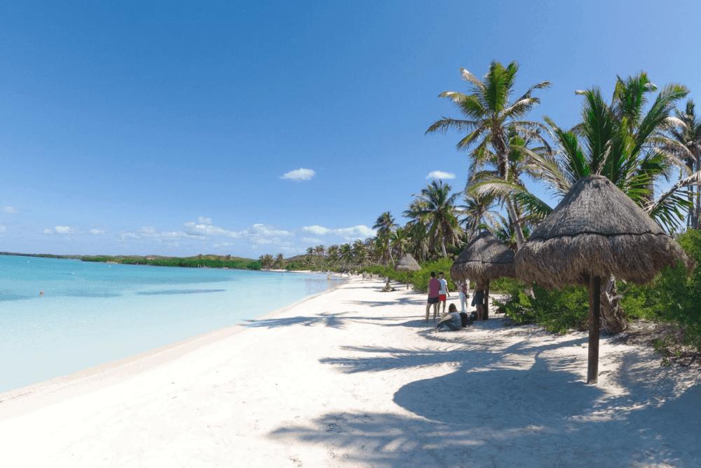 Punta Allen - Qué admirar en Punta Allen