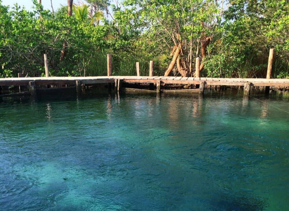 Qué hacer en Holbox - Cenote Yalahau