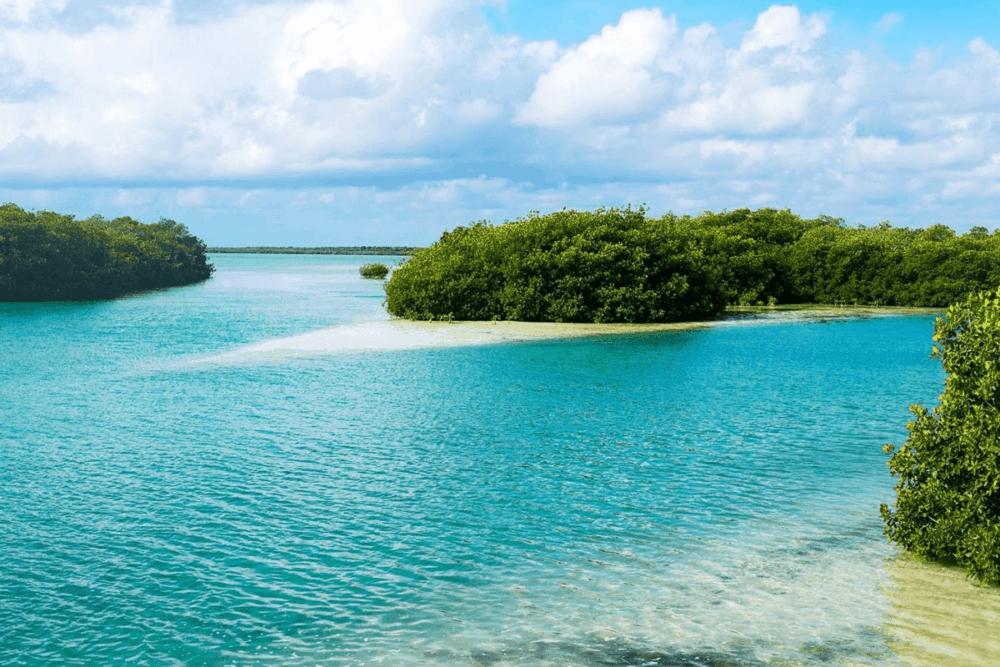 Sian Ka'an Quintana Roo - Las Playas en Sian Ka'an