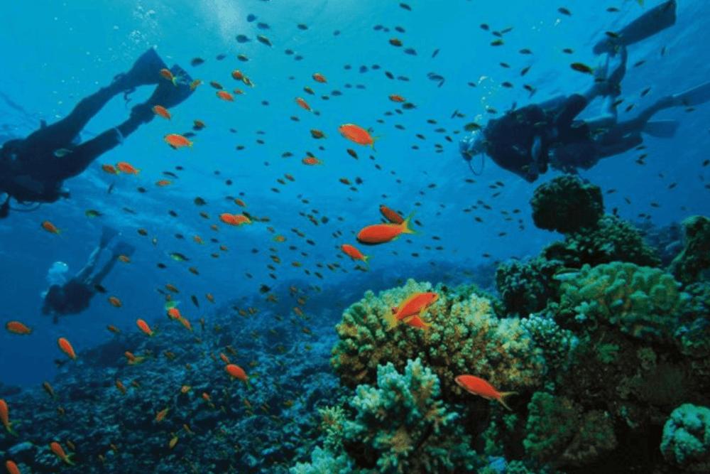 Sian Ka'an Quintana Roo - Reserva de la Biosfera Sian Ka'an