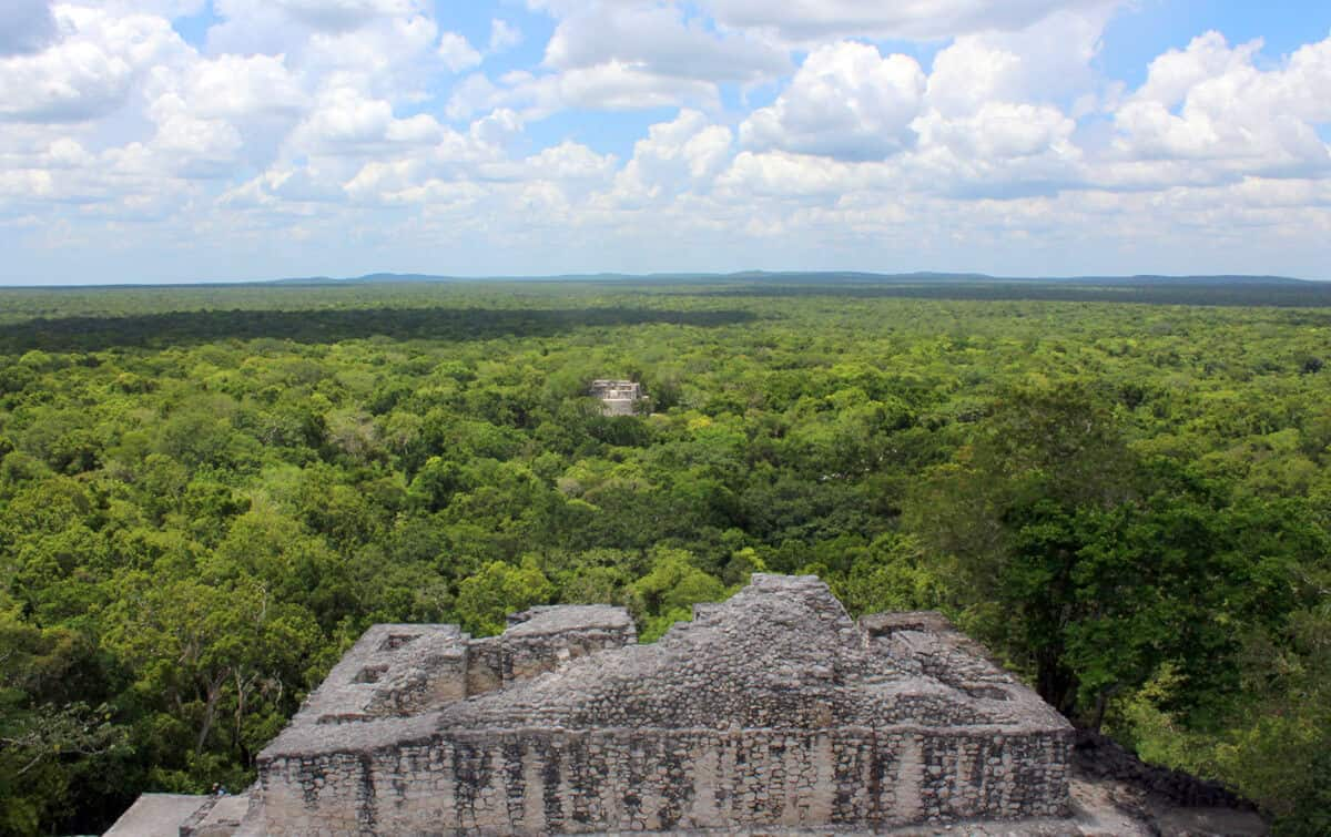 Calakmul Campeche - Reserva