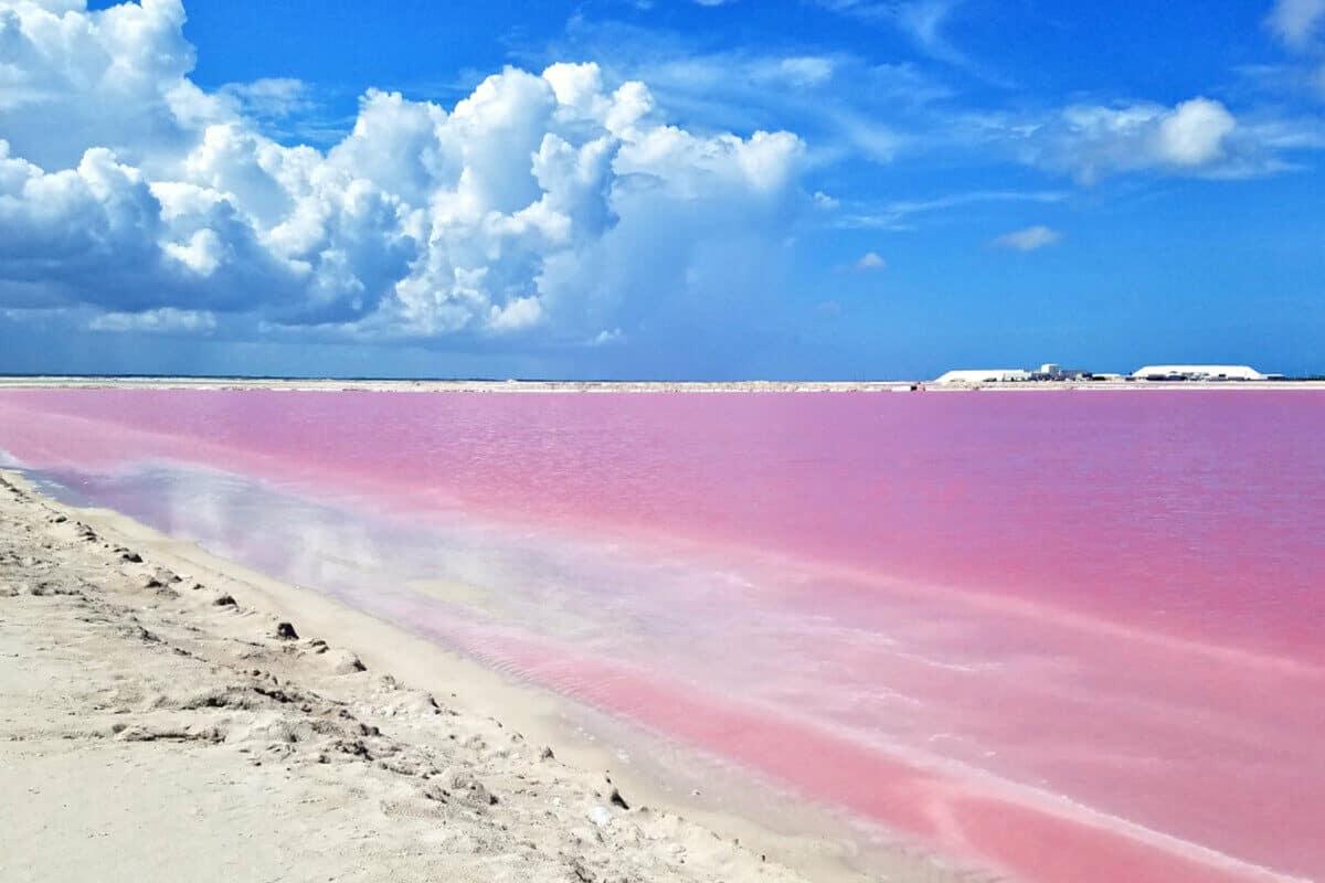 Las Coloradas Yucatán - Agua Rosa y arena