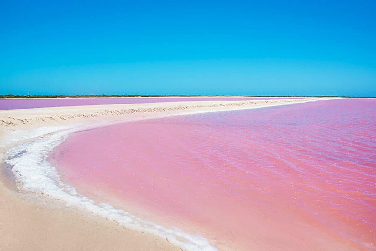 Las Coloradas Yucatán - Agua rosa