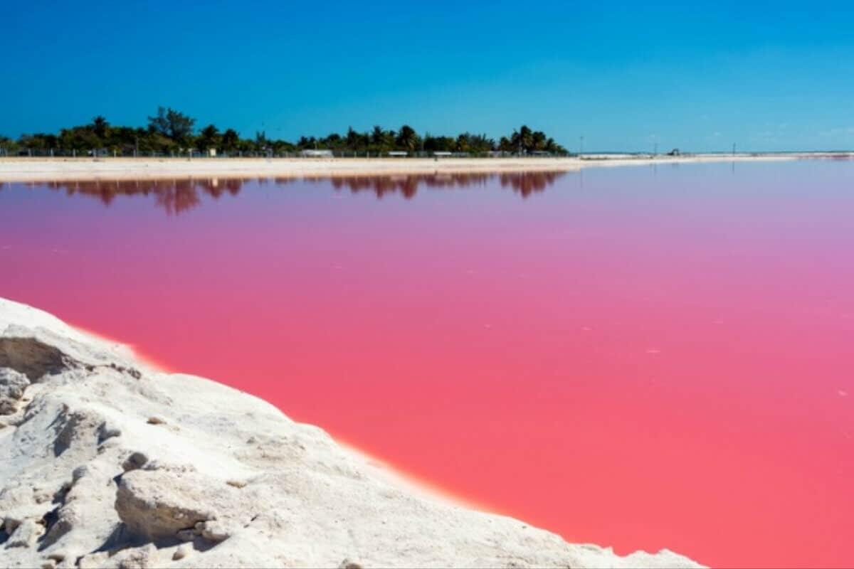 Las Coloradas Yucatán - Lago Rosa
