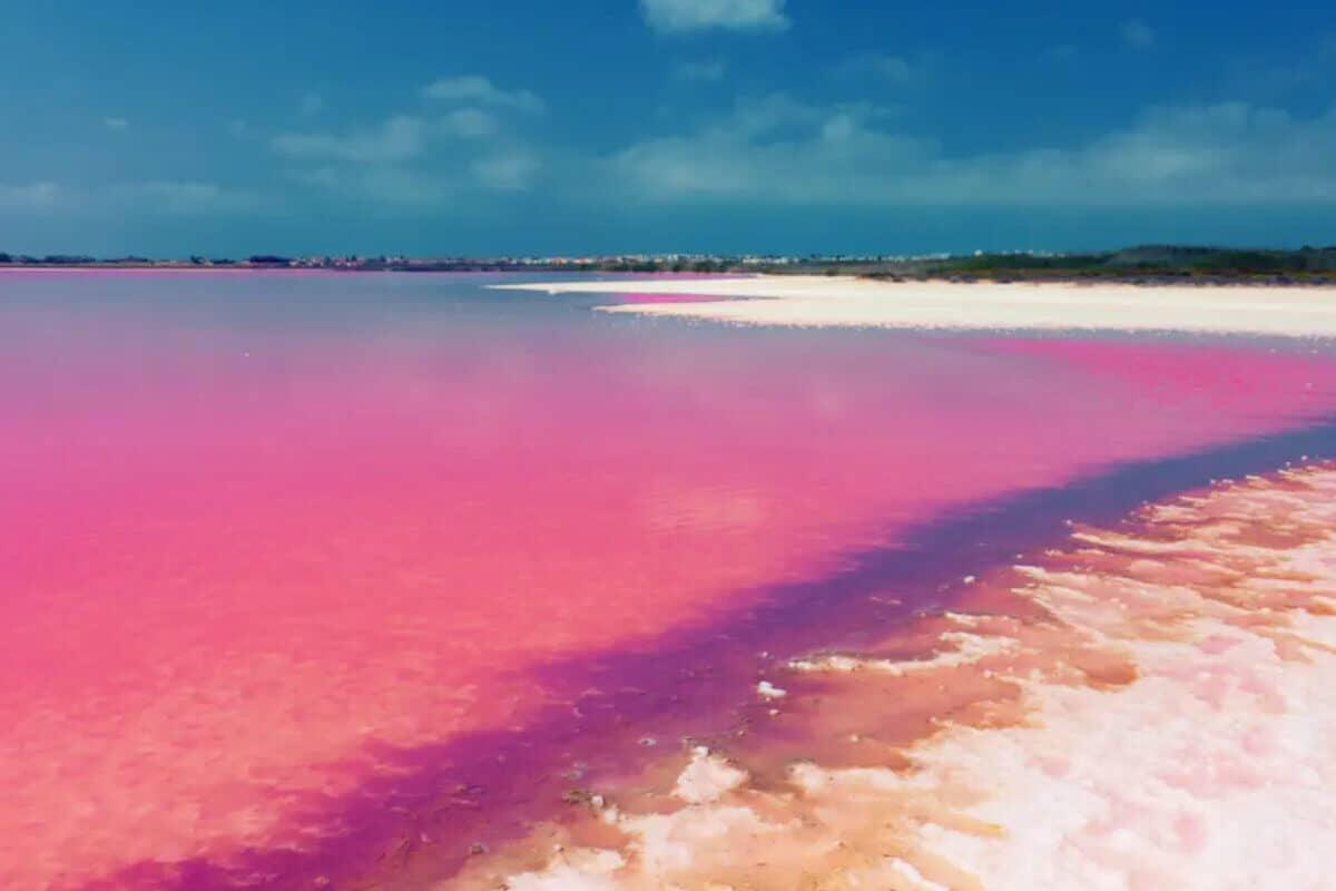 Las Coloradas Yucatán - Lago Rosa y arena