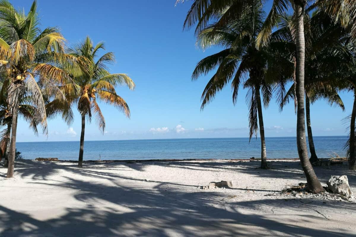 Las mejores Playas de Yucatán - La Playa San Crisanto