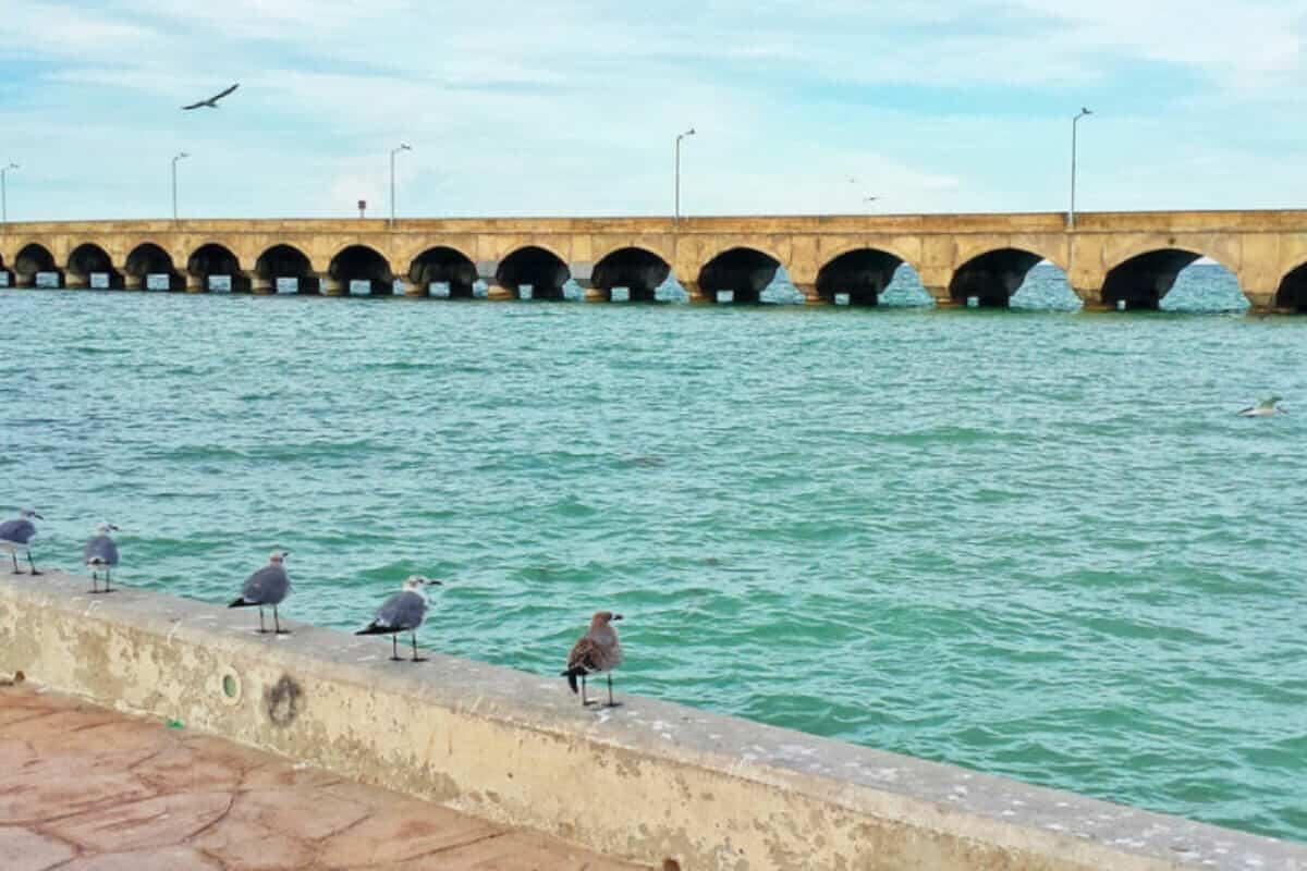 Puerto Progreso Yucatán - Muelle
