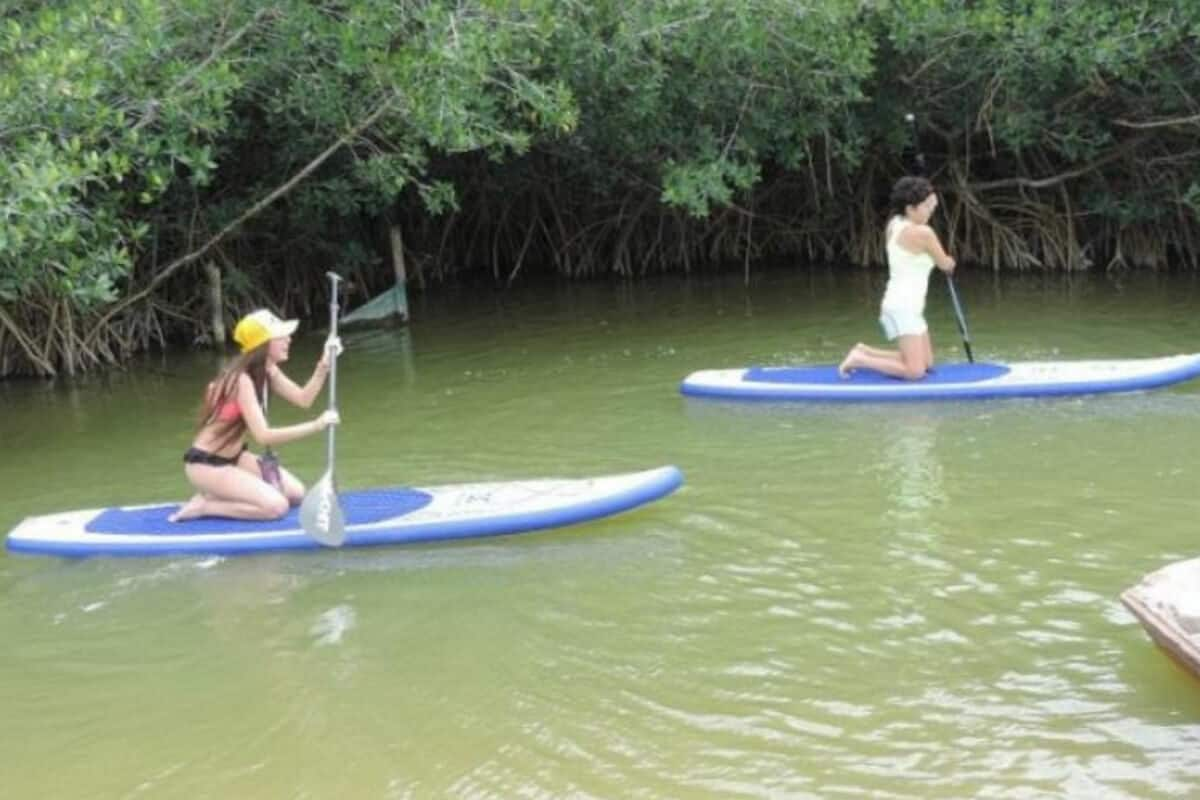 Río Lagartos Yucatán - Paseo en Kayak
