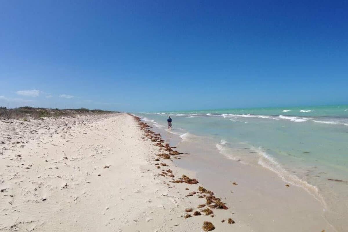 Río Lagartos Yucatán - Playa, sol y arena