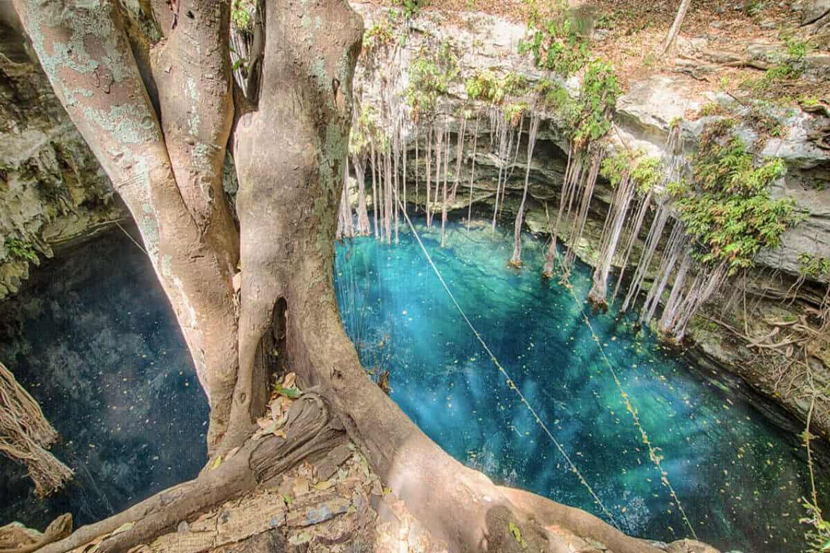 Cenote Lol-Ha - Qué saber del Cenote Lol-Ha