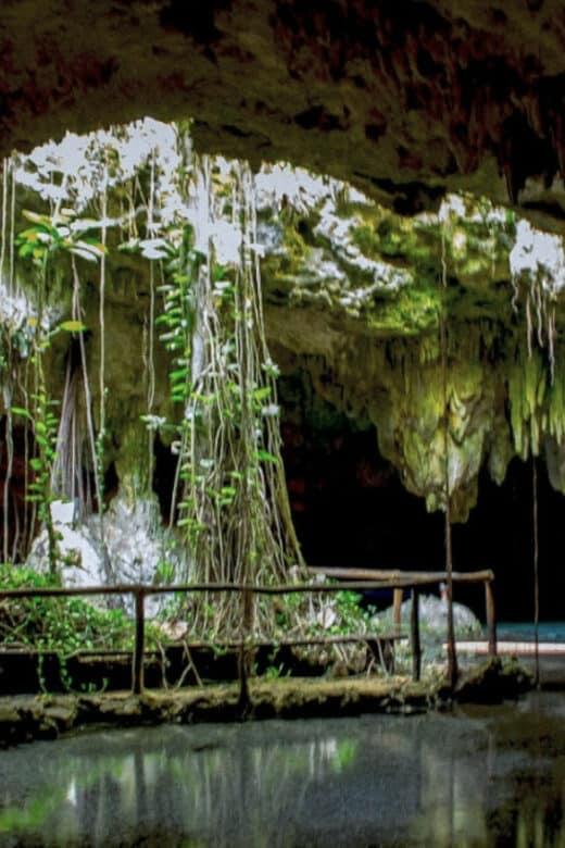 Cenote Chaak Tun - Luz y raíces de árbol