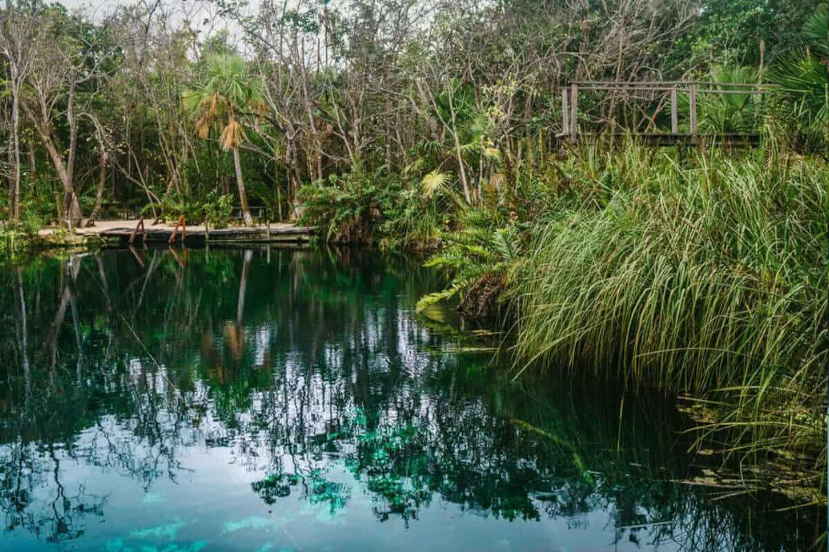Cenote Escondido - Qué saber del Cenote Escondido