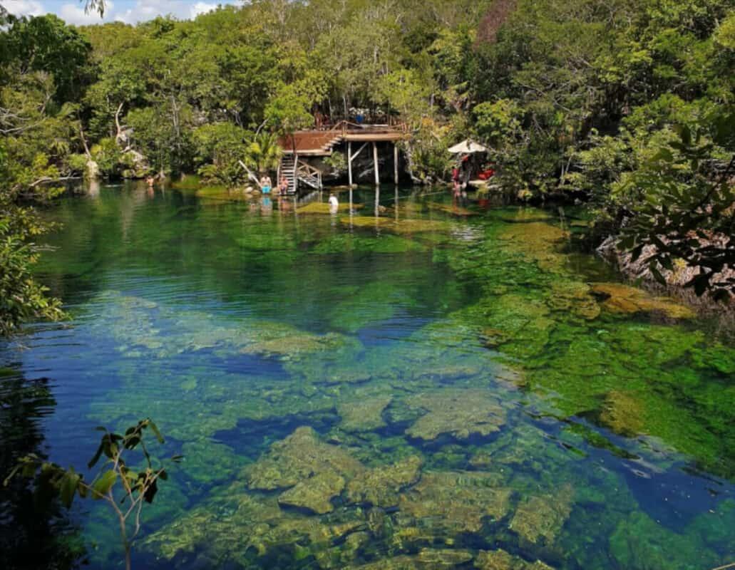 Cenote Jardín del Edén - Cenote abierto