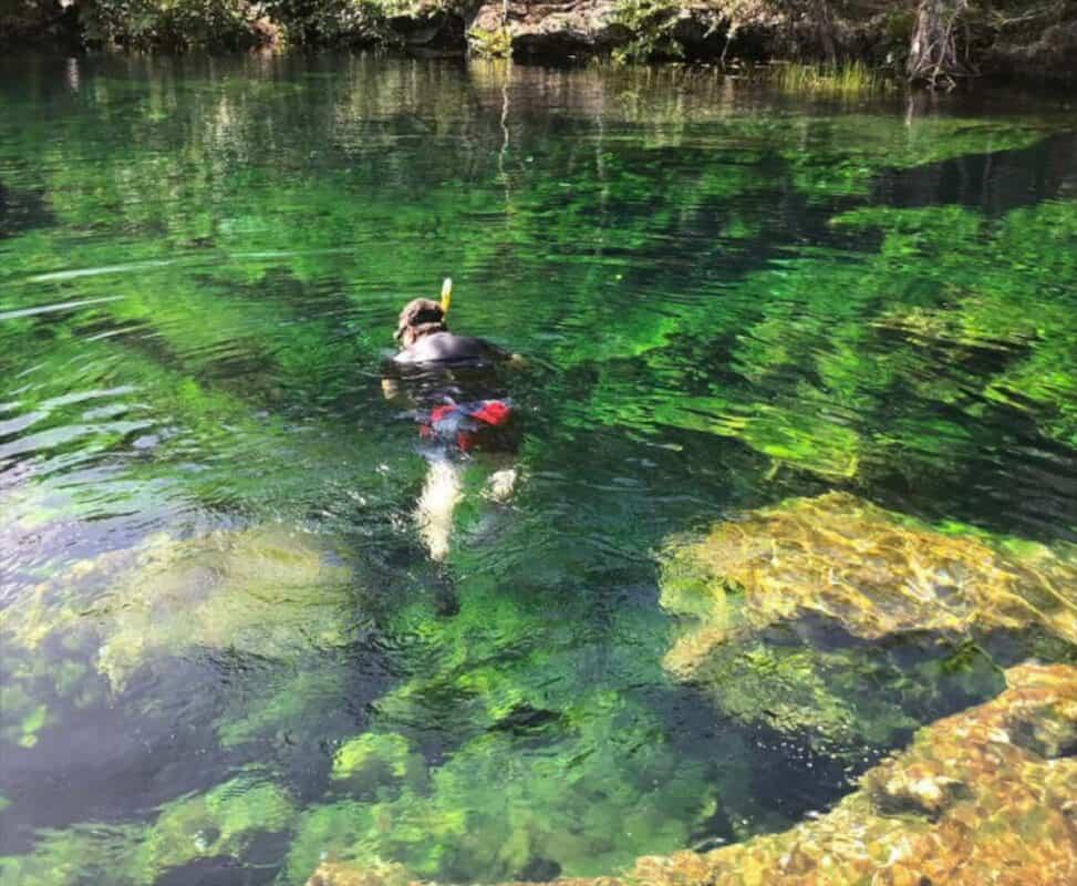 Cenote Jardín del Edén - Snorkel