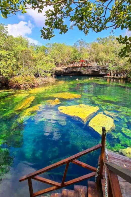 Cenote Jardín del Edén - Un paraíso terrenal