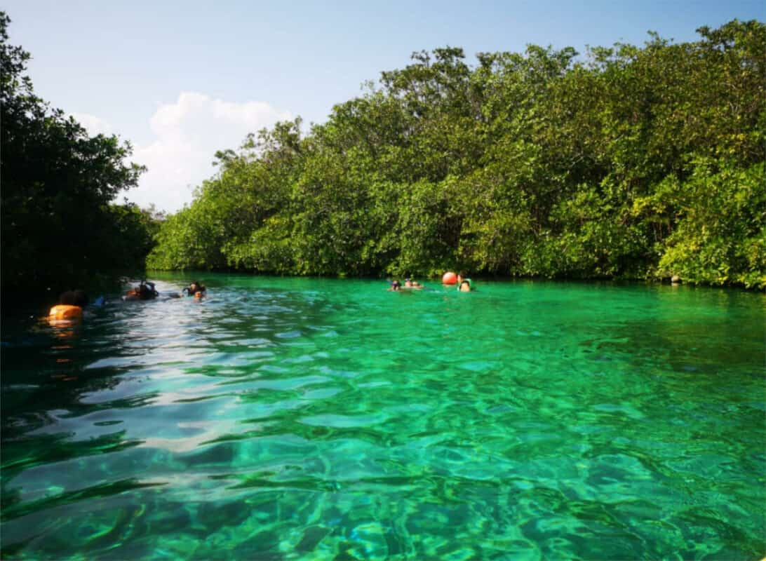 Cenote Manatí - Actividades