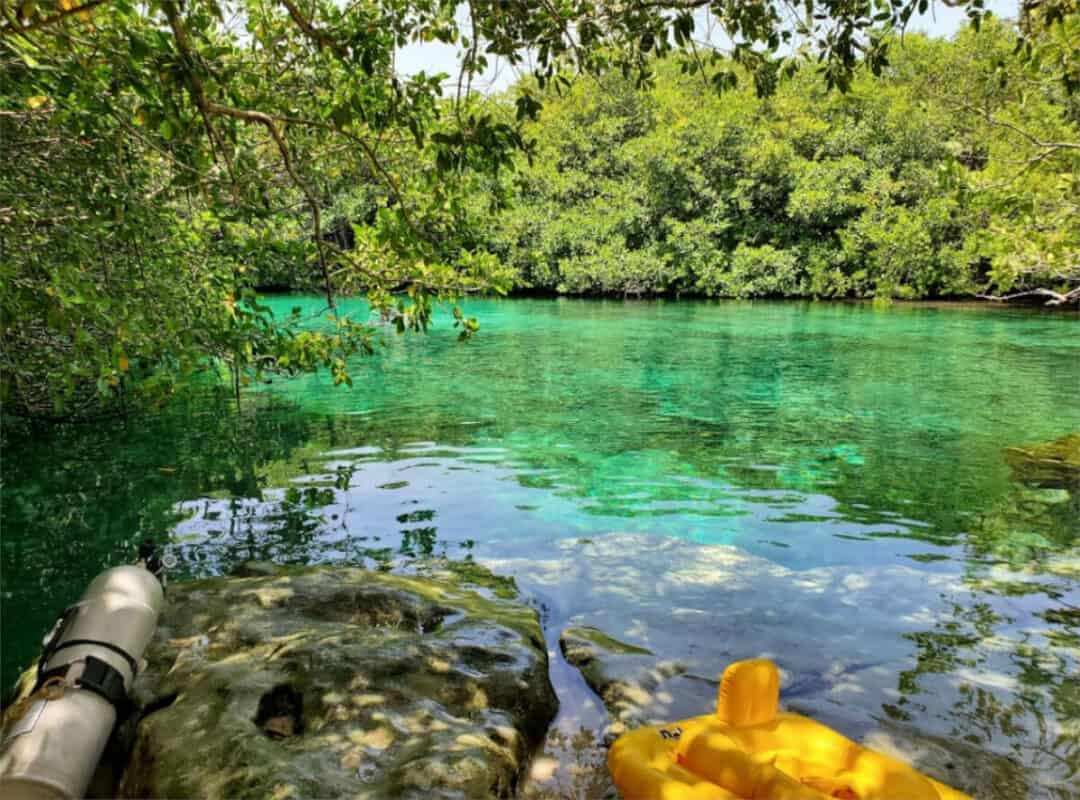Cenote Manatí - Cenote
