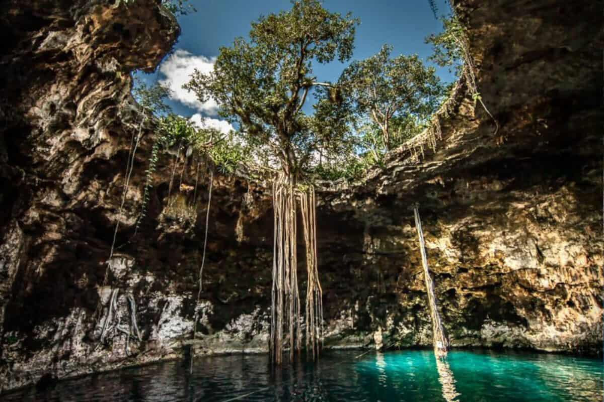 Cenote Santa Bárbara - El Cenote Xoch