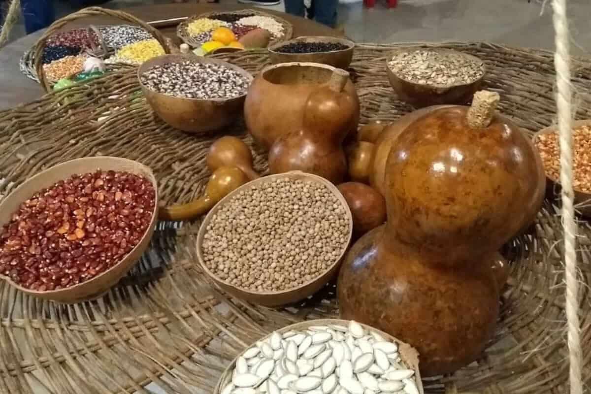Gastronomía de los Mayas - La Yuca y los Frijoles