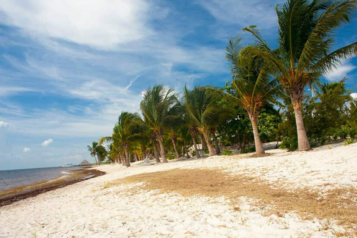 Playas públicas en Cancún - Playa Punta Nizuc