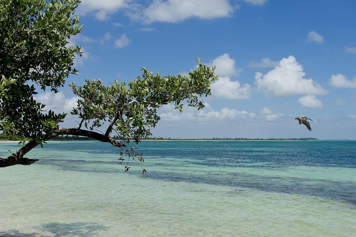 Playas públicas en Tulum - Playa Sian Ka´an
